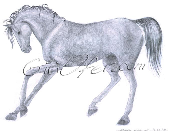 dream horse 98